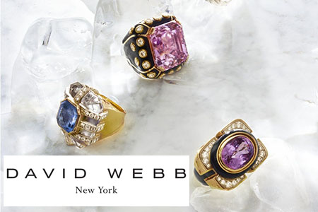 David Webb New York